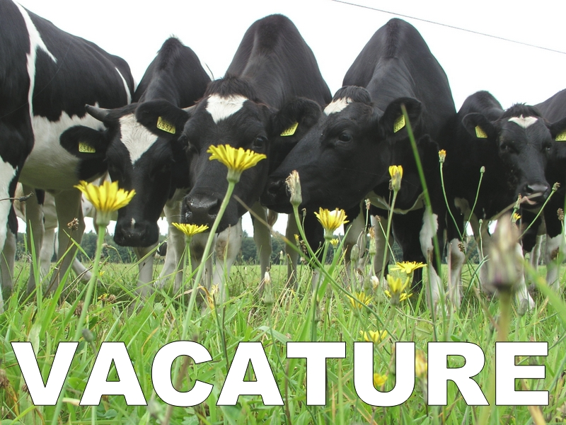 Vacature projectleider Agrarisch Natuur- en Landschapsbeheer