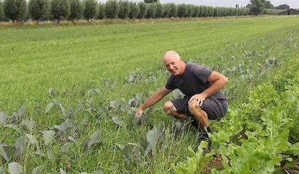 Van melkveehouder naar akkerbouwer, Theo Nieuwenhuis